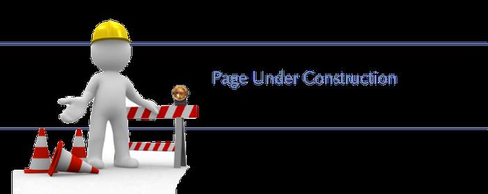 Disclaimer Engelse site
